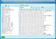 3. ReadInfo AS086BD33E 1005-22 04C7 Reset-OK 6000mAh.png
